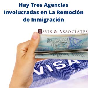 Hay tres agencias involucradas en la remoción de inmigración