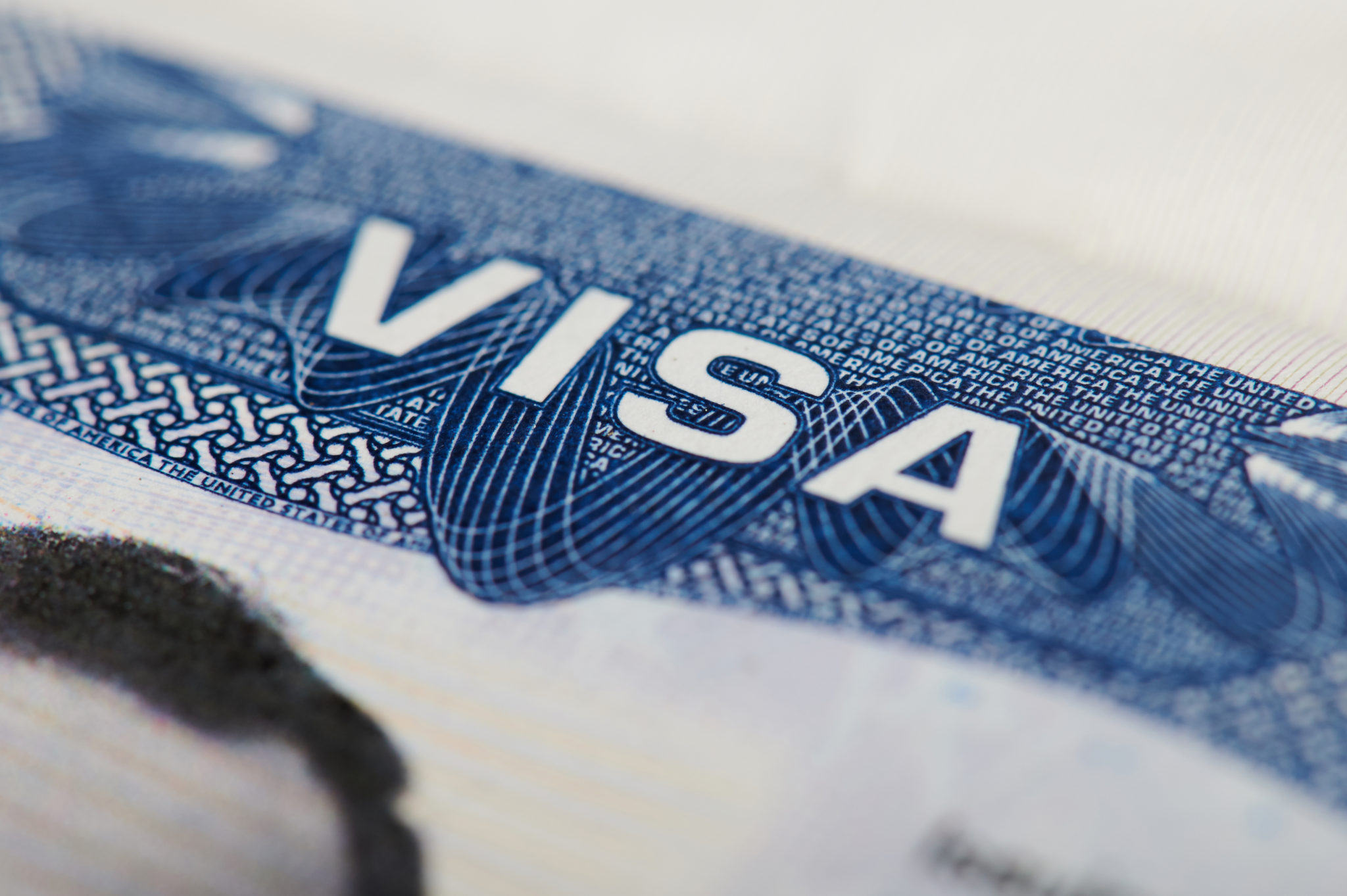 E-1 Visa - Business Immigration